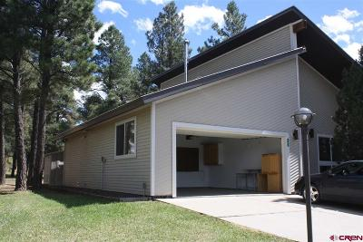 Pagosa Springs Single Family Home For Sale: 167 Mosswood Drive