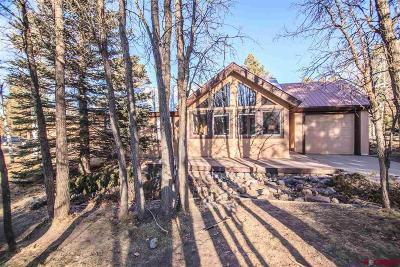 Pagosa Springs Single Family Home For Sale: 143 Masters Circle