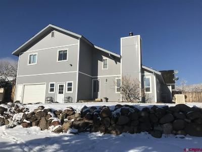 Paonia Single Family Home For Sale: 40321 Cedar Lane