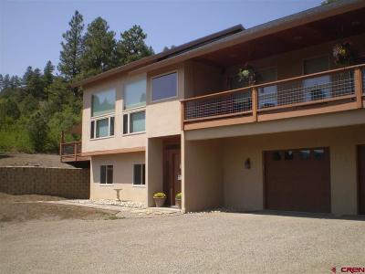 Pagosa Springs Single Family Home For Sale: 1601 Harvard Avenue