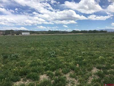 Olathe Residential Lots & Land For Sale: 8810 S River Road