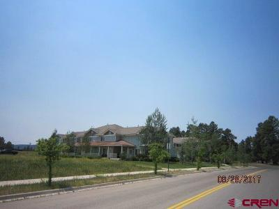 Pagosa Springs Condo/Townhouse For Sale: 20 Timberline Drive #A-7