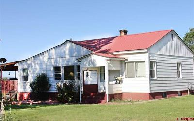 Hotchkiss, Crawford, Paonia Single Family Home For Sale: 461 Price Road