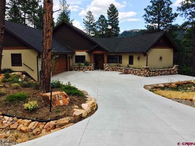 La Plata County Single Family Home For Sale: 18 Big Bend Loop