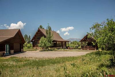 Pagosa Springs Single Family Home For Sale: 340 E Morning Glory Dr.