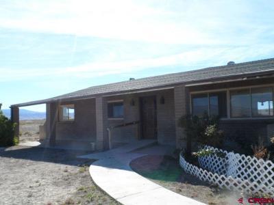 Delta Single Family Home For Sale: 21772 E Road