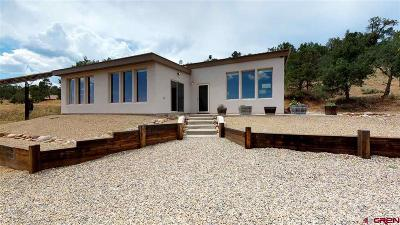 Ignacio Single Family Home For Sale: 2126 County Road 309a