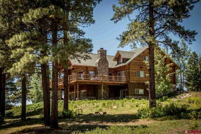 Pagosa Springs Single Family Home For Sale: 66 Rendezvous