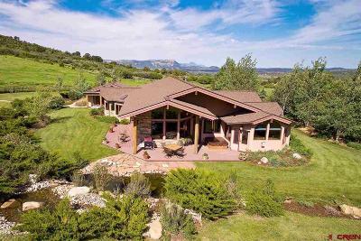 Montezuma Farm For Sale: 42760 Highway 160