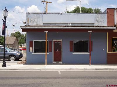 Cedaredge Commercial For Sale: 140 W Main Street