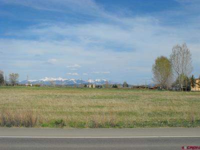 Dolores CO Residential Lots & Land For Sale: $85,000