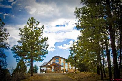 Pagosa Springs Single Family Home For Sale: 922 Jenkins Place