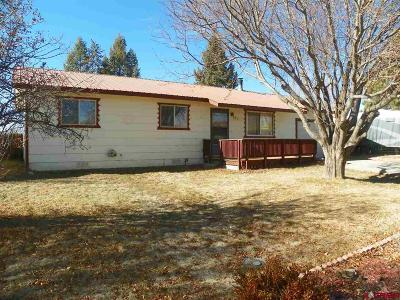Bayfield Single Family Home For Sale: 327 S Mesa Avenue