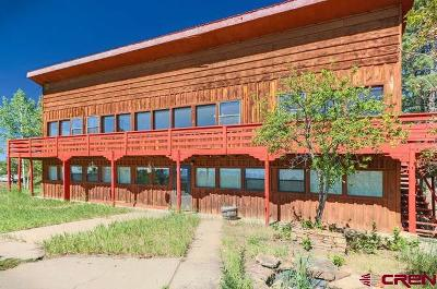 Pagosa Springs Single Family Home For Sale: 93 Brookhill Drive