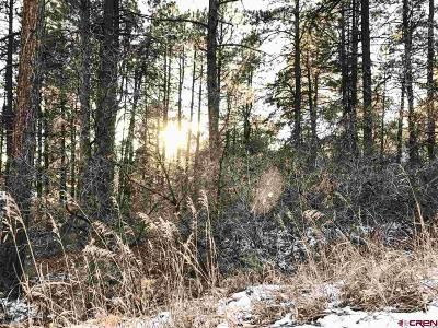 Bayfield CO Residential Lots & Land For Sale: $30,000