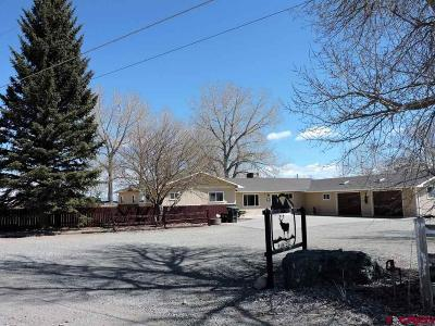 Alamosa Single Family Home For Sale: 11450 No Name Lane