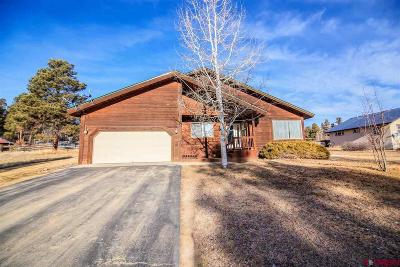 Pagosa Springs Single Family Home For Sale: 161 Sweetwater Drive
