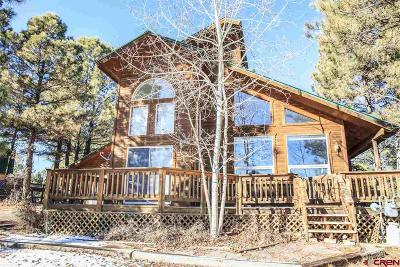 Pagosa Springs Single Family Home For Sale: 25 Balfour Court