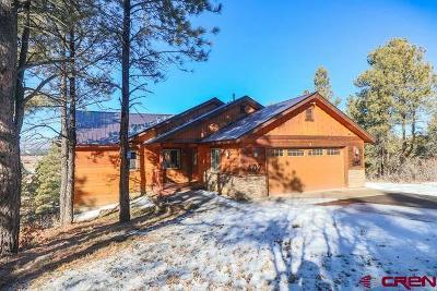Pagosa Springs Single Family Home For Sale: 407 Handicap Avenue