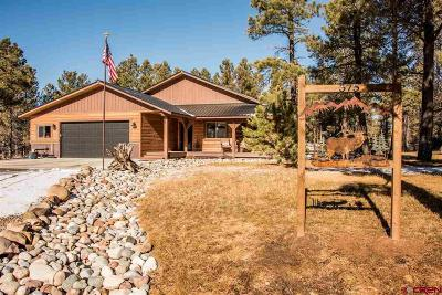Pagosa Springs Single Family Home For Sale: 575 Oxbow Circle