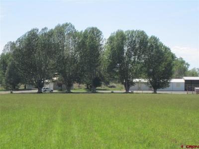 Olathe Single Family Home For Sale: 8211 5500 Road