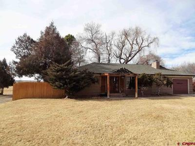 Hotchkiss CO Single Family Home For Sale: $230,000