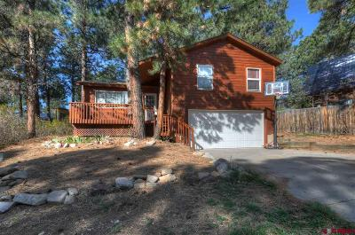 Durango CO Single Family Home For Sale: $310,000