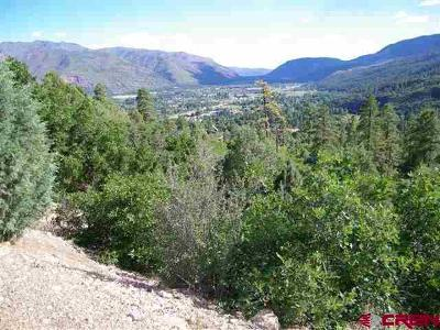 Durango Residential Lots & Land For Sale: Rim Rock Drive