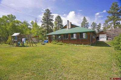 La Plata County Single Family Home For Sale: 21415 Highway 140