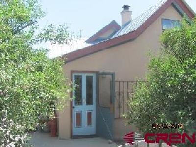 La Plata County Single Family Home For Sale: 46 W North Street