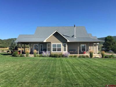 La Plata County Single Family Home NEW: 849 Pine River Ranch Circle