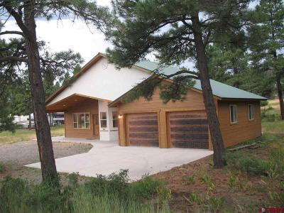 Pagosa Springs Single Family Home For Sale: 1623 W Highway 160