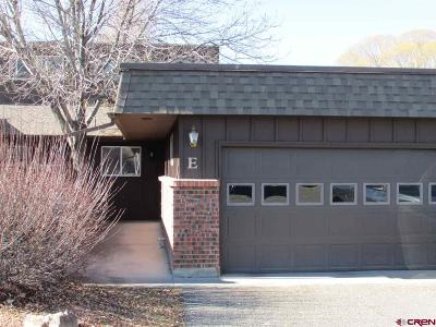 Montrose Condo/Townhouse For Sale: 1120 Phillips Court #E