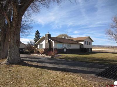 Montrose Single Family Home For Sale: 61868 Oak Grove