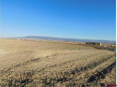 Delta Residential Lots & Land For Sale: 18 Sol Vista Lane