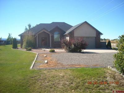 Montrose Single Family Home For Sale: 62879 Hwy 90