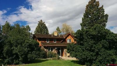Hotchkiss, Crawford, Paonia Single Family Home For Sale: 30758 L Road