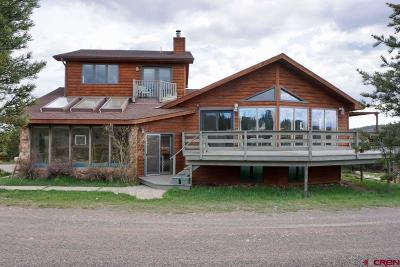 Ouray County Single Family Home For Sale: 5351 Cnty Rd 1