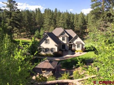 La Plata County Single Family Home For Sale: 257 Iron King