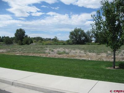 Delta Residential Lots & Land For Sale: Circle/Valley View - Lot 4