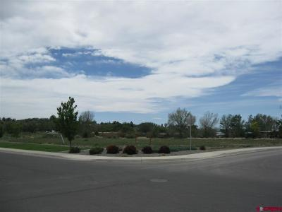 Delta Residential Lots & Land For Sale: Valley View Dr/Hwy 92 - Lot 3