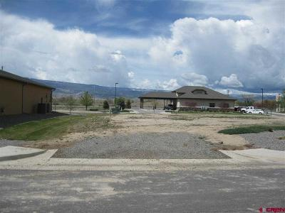 Delta Residential Lots & Land For Sale: Valley View Dr/Hwy 92 - Lot 7