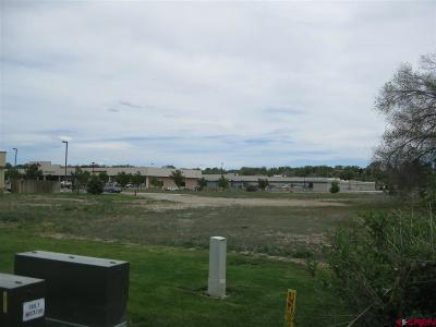 Delta Residential Lots & Land For Sale: Valley View Dr/Hwy 92 - Lots 1, 3 & 4