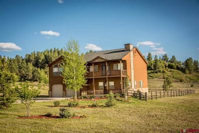 Pagosa Springs Single Family Home For Sale: 59 Hatcher Cir