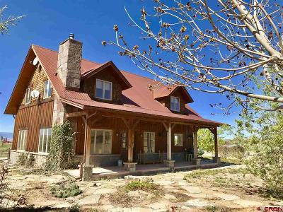 Montrose Single Family Home For Sale: 11769 5800 Road