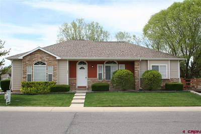 Montrose Single Family Home For Sale: 684 Cobble Drive