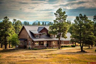 Pagosa Springs Single Family Home For Sale: 141 Northview Ct.