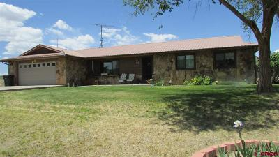 Montrose Single Family Home For Sale: 59253 Spring Creek Road