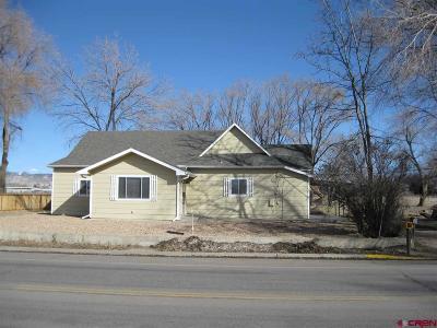 Montrose Single Family Home For Sale: 202 Hillcrest