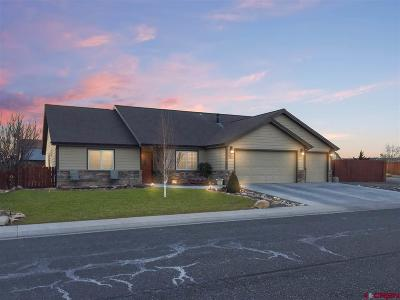 Montrose Single Family Home For Sale: 3211 Ravens Crest Drive